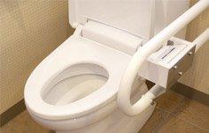 am nagement de wc pour personnes g es. Black Bedroom Furniture Sets. Home Design Ideas