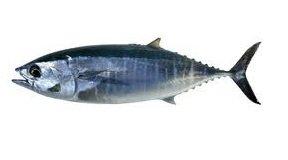 poisson omega 3